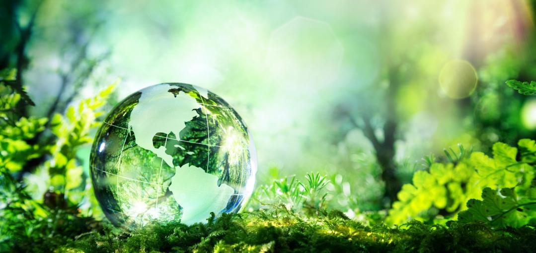 Agir pour le Capital Naturel : les 4 lauréats sont ...