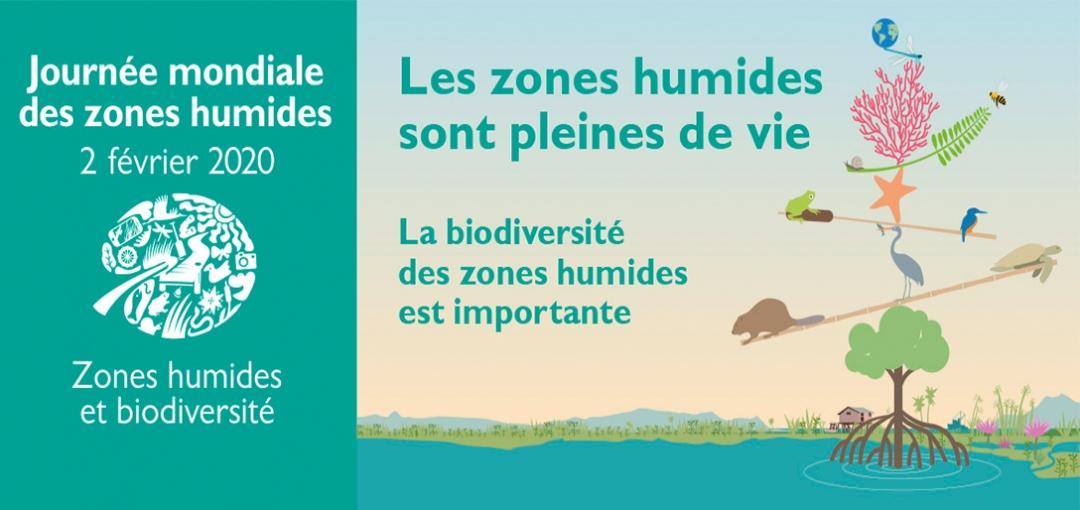 La journée mondiale des zones humides 2020