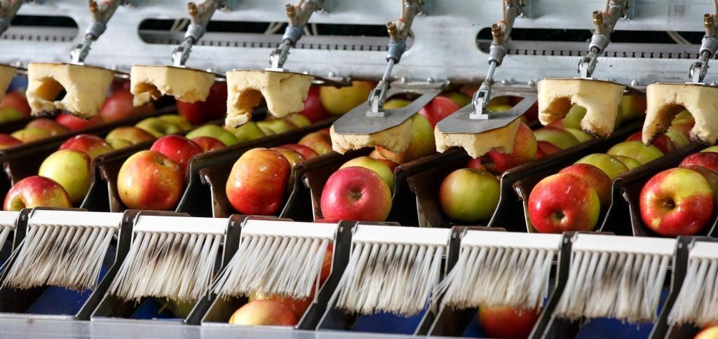 Organix®, la première place de marché des matières organiques